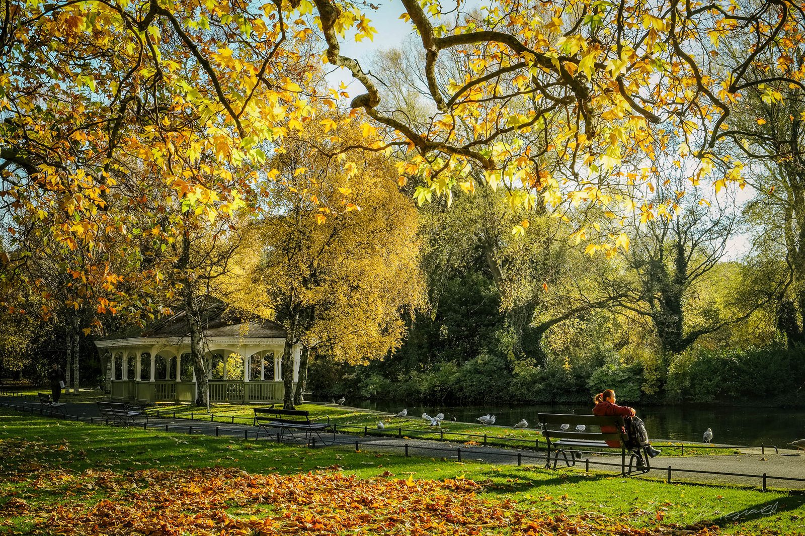 St. Stephen's Green in Autumn